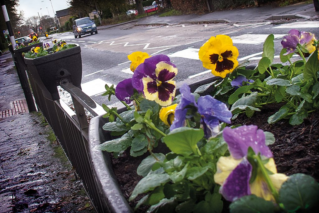 Planters on Welton Road in Brough